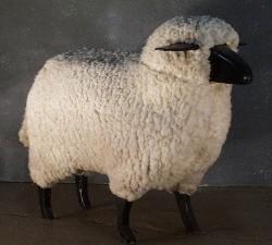 1025 sheep